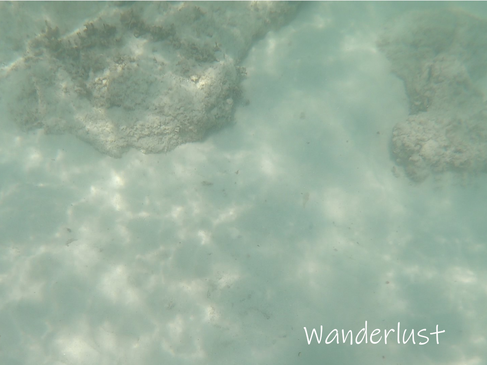 海底には岩がある